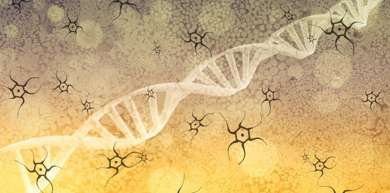 Diabète, surpoids : comment le mode de vie influence nos gènes