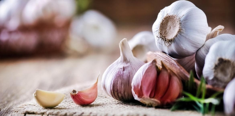 Corazón, cerebro, inmunidad: los beneficios para la salud del ajo |  LaNutrition.fr