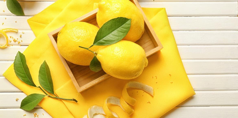 Tout savoir sur le citron - Quand cueillir les citrons ...