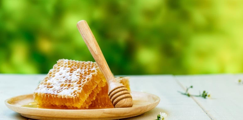 cancer miel et gel e royale prot gent de la toxicit de la chimioth rapie. Black Bedroom Furniture Sets. Home Design Ideas