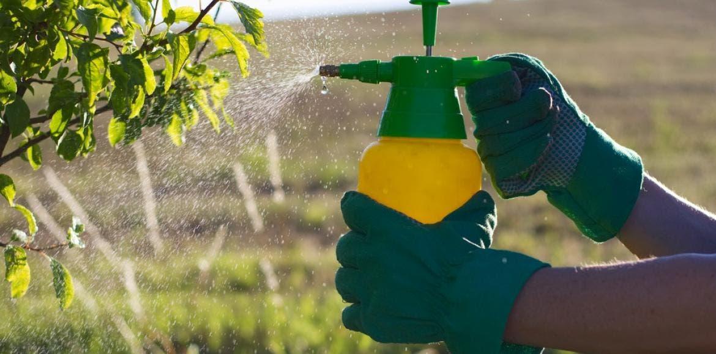 Avérés 10 Des Dangers Pesticides Des 10 Avérés Dangers gdqgBSxp