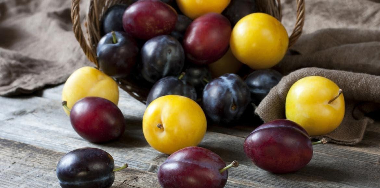 La prune et le pruneau