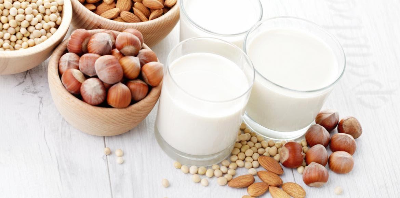 Comment choisir un « lait » végétal | LaNutrition.fr