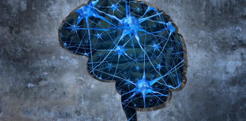 Troubles de la mémoire, Alzheimer : le Candida comme cause ...