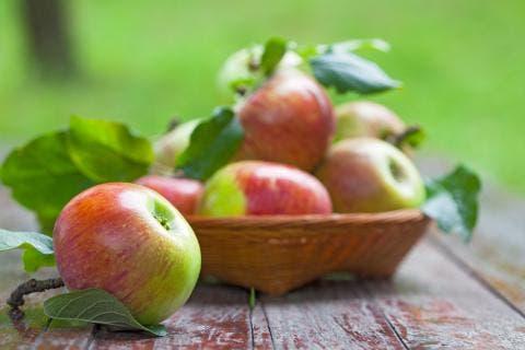 juteux pomme rouge datant sites de rencontres catholiques au Royaume-Uni